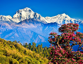 Nepal Holiday Packages