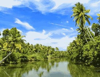 Amazing Kerala Holiday Package